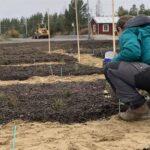  Ecogain och Ragn-Sells i unikt pilotprojekt – tillverkar jord av restavfall